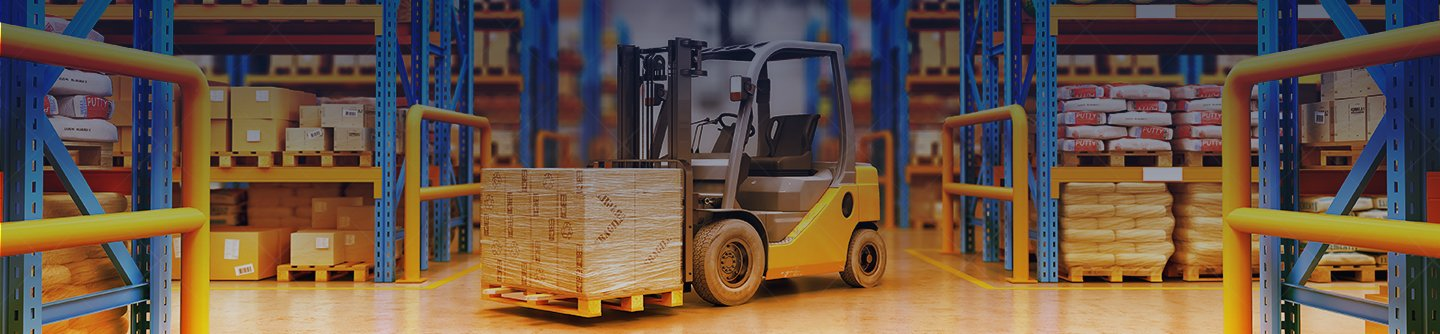 Warehouse and Distribution Center Automation Services